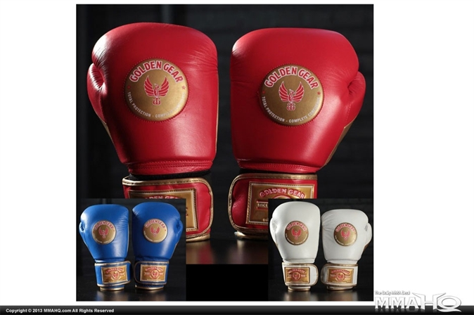 Golden Gear Warrior Series Sparring Gloves